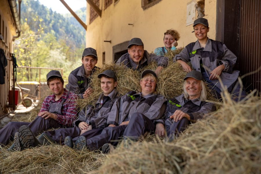 Best Farm Experience in Slovenia